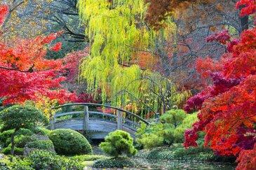 fort-worth-botanic-garden